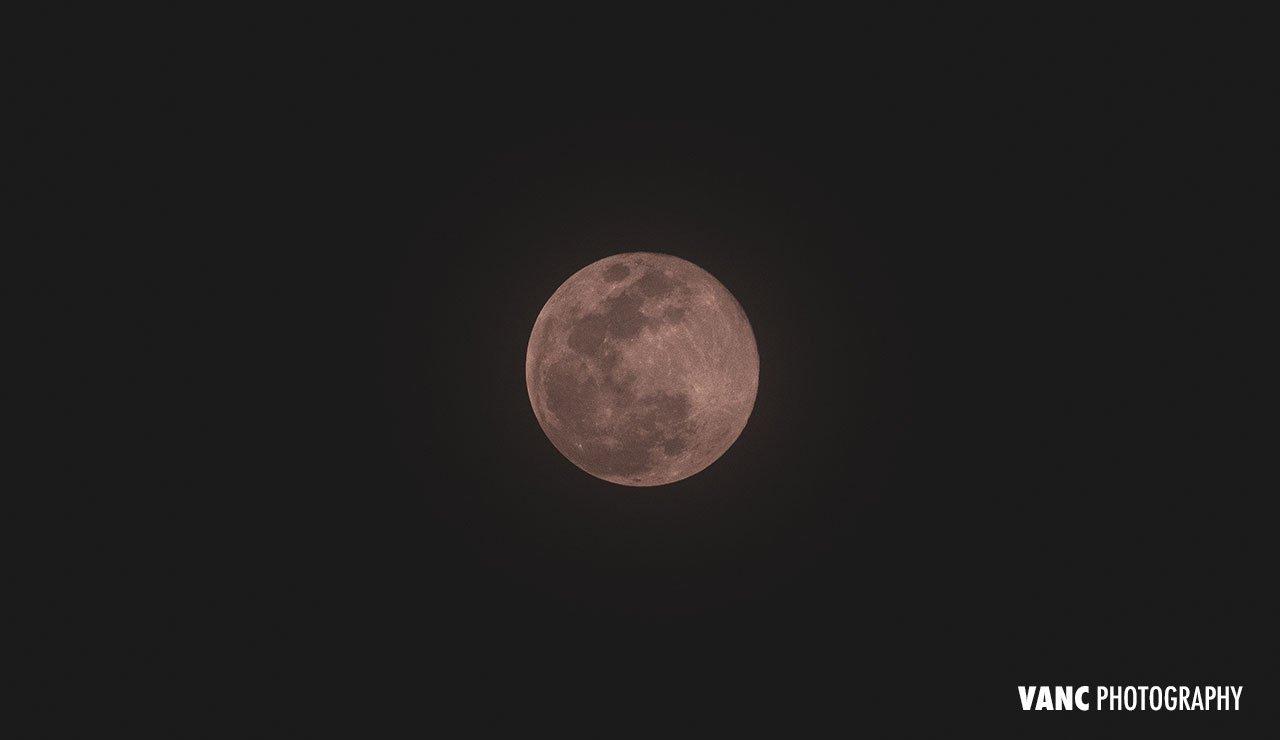 Fujifilm Telephoto Flower Moon Sample