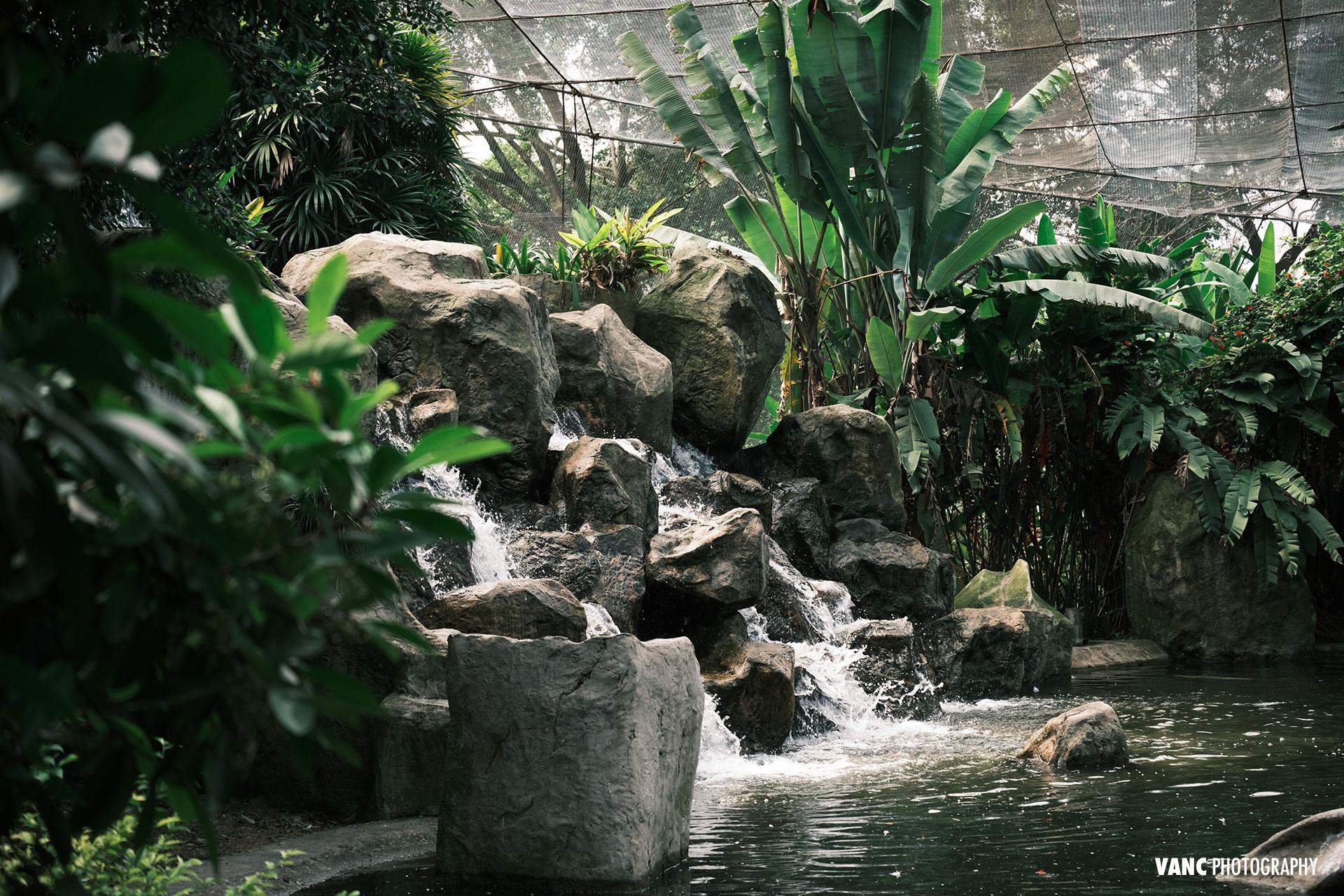 Waterfall Fountain Bird Park