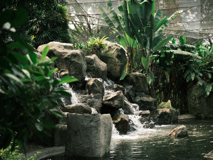 Fujifilm X-T30 Landscape - KL Bird Park