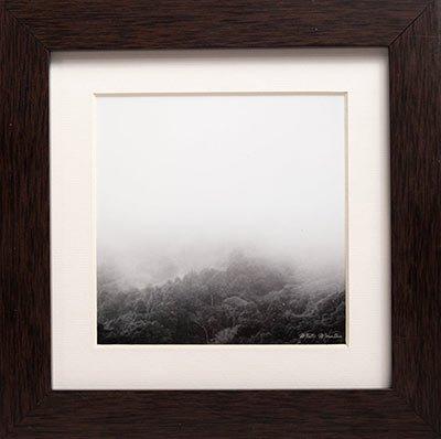 Misty Forest Wall Decor
